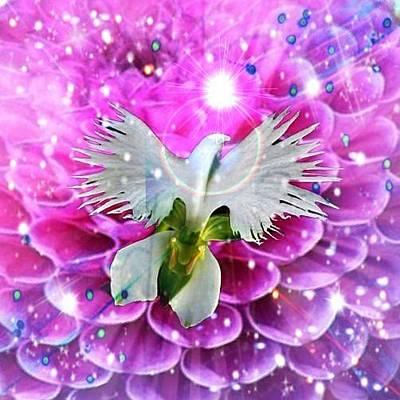 Digital Art - Bird Of Paradise by Karen Buford