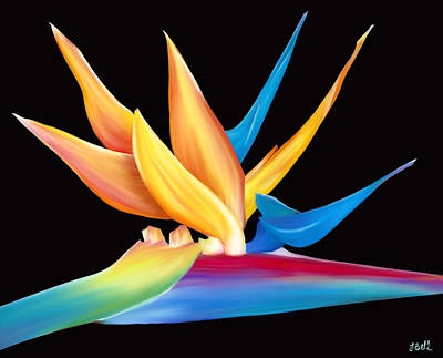 Painting - Bird Of Paradise by Laura Bell