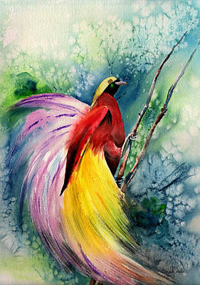 Tribute Drawing - Bird Of Paradise New-guinea by Isabel Salvador