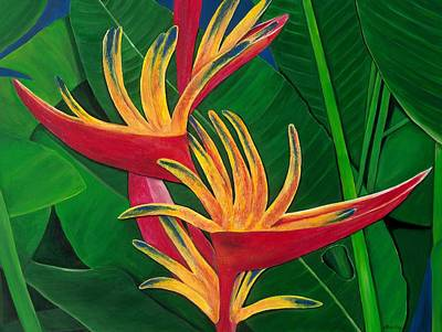 Bird Of Paradise Painting Art Print