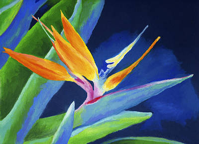 Bold Colors Painting - Bird Of Paradise by Stephen Anderson