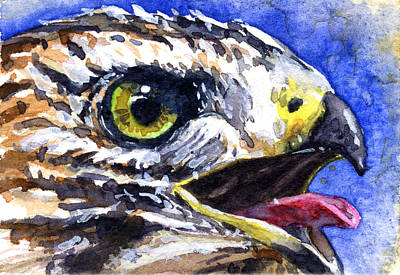 Painting - Bird Of Prey 2 by John D Benson