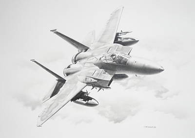 Bird Of Prey Original by James Baldwin Aviation Art