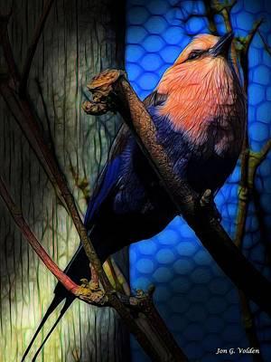 Photograph - Bird On A Perch by Jon Volden