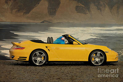 Birds Mixed Media Rights Managed Images - Bird on Porsche 911 Royalty-Free Image by Drawspots Illustrations