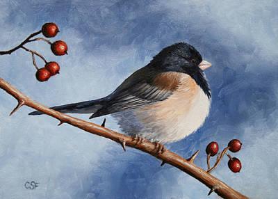 Bird Painting - Dark-eyed Junco Art Print