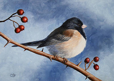 Dark Eyes Painting - Bird Painting - Dark-eyed Junco by Crista Forest
