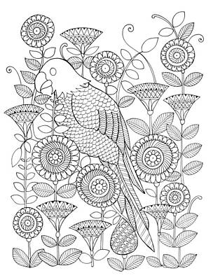 Intricate Drawing - Bird Parrot by Neeti Goswami
