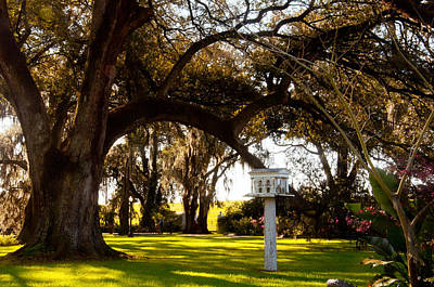 Photograph - Bird Plantation House by Helen Haw