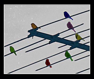Bird Reception Art Print