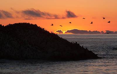 Photograph - Bird Rock by Derek Dean