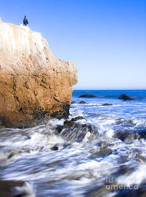 Photograph - Bird Rock Where The Sand And Beach Meet by Jerry Cowart
