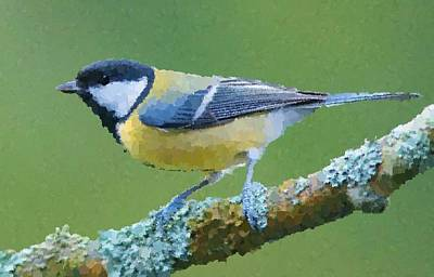 Painting - Bird by Samuel Majcen
