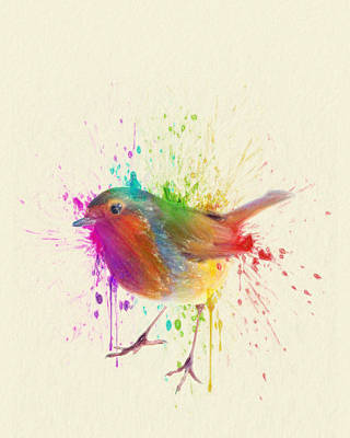 Birds Drawings Rights Managed Images - Bird Study Royalty-Free Image by Zapista Zapista