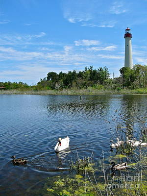 Photograph - Bird Watching At Cape May Light by Nancy Patterson
