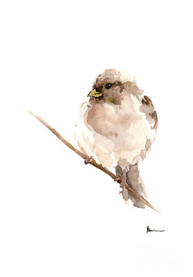 Sparrow Mixed Media - Bird Watercolor Art Print Painting by Joanna Szmerdt
