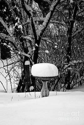Frank J Casella Royalty-Free and Rights-Managed Images - Birdbath in WInter by Frank J Casella