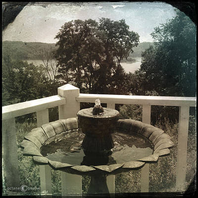 Photograph - Birdbath With A View by Tim Nyberg