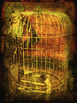 Digital Art - Birdcage by Clarity Artists