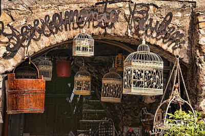 Photograph - Birdcages Galore by Brenda Kean
