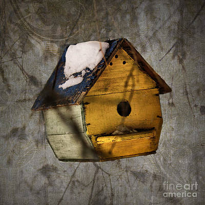 Photograph - Birdhouse by Aimelle