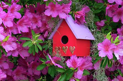Birdhouse Photograph - Birdhouse And Azaleas In Garden by Jaynes Gallery