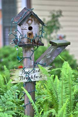 Photograph - Birdhouse Bed And Breakfast by Gordon Elwell