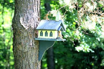 Photograph - Birdhouse Church by Gordon Elwell