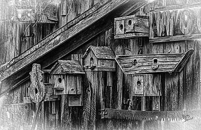 Birdhouse Collection Art Print by Betty Denise