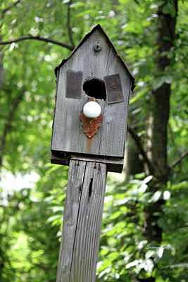 Outsider Art Digital Art - Birdhouse Collection I by Suzanne Gaff