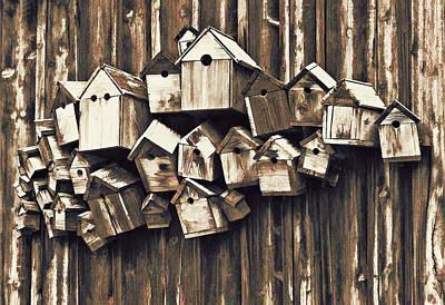 Unique Photograph - Birdhouse Condominium by Marcia Colelli