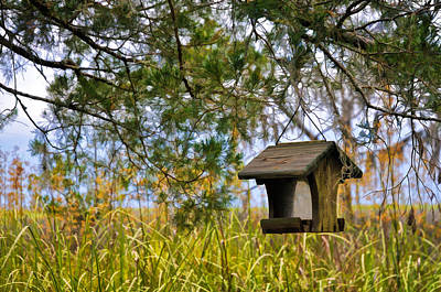 Photograph - Where The Wild Birds Eat by Ginger Wakem