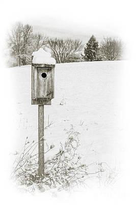 Snowy Digital Art - Birdhouse In Snowy Field by Randy Steele