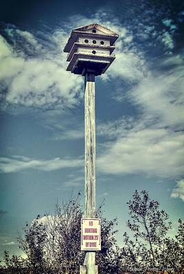 Photograph - Birdhouse by Michaela Preston