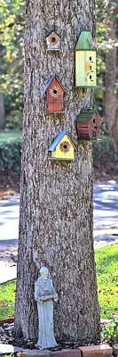 Photograph - Birdhouse Neighborhood by Gordon Elwell