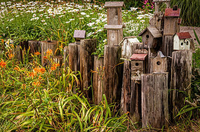 Photograph - Birdhouses Beside A Country Road by Gene Sherrill