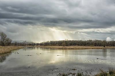 Photograph - Birdland by Belinda Greb