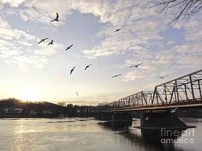 Birds And Bridges Art Print