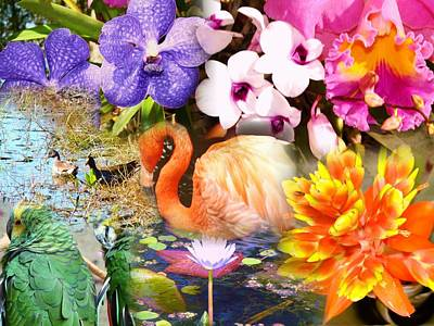 Photograph - Birds And Flowers by Van Ness