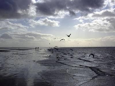 Birds At The Beach 2 Art Print