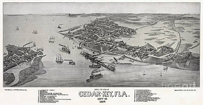 Watercolor Typographic Countries - Birds eye view of Cedar-Key Florida by Celestial Images
