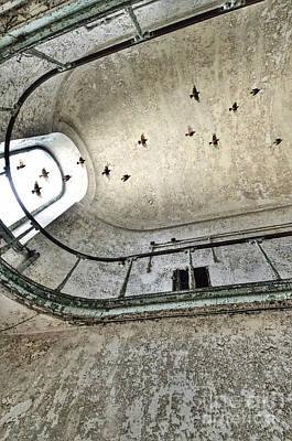 Birds Flying Through Open Window In Abandoned Building Print by Jill Battaglia