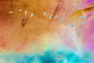 Mixed Media - Birds In Flight Over Water Art by Priya Ghose