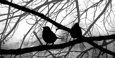 Photograph - Birds In Shadow - Black And White Version by Shawna Rowe