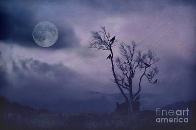 Birds In The Night Art Print