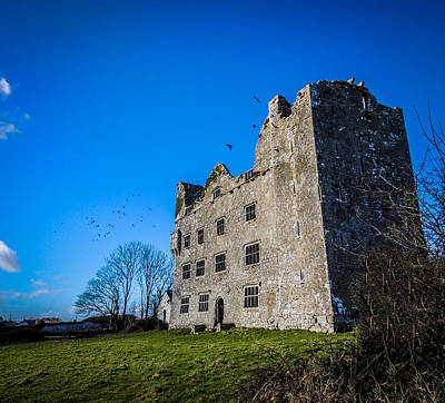 Photograph - Birds Of Ireland's Leamaneh Castle by James Truett