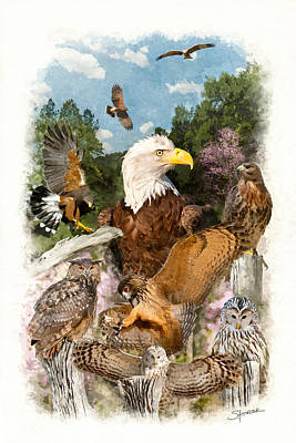 Digital Art - Birds Of Prey by Alan Sherlock
