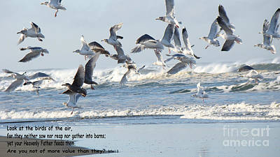 Birds Of The Air Art Print by Beverly Guilliams