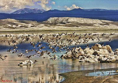 Photograph - Birds Over Mono Lake by Blake Richards
