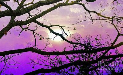 Birds Roosting For Night Art Print